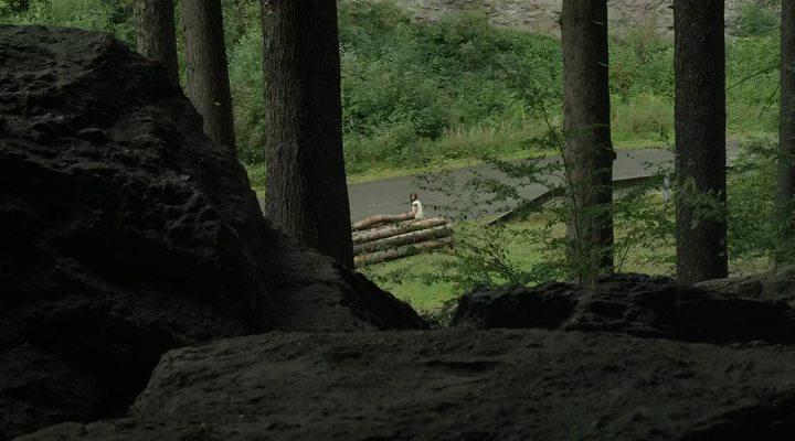 Perspektive auf den Waldweg, den Ana (Mijovic) und Johannes (Matschenz) etliche Male zurücklegen / Credit: BR/Christian Schulz