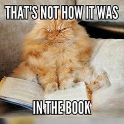 Grumpy Cat im Kino: Der typische Buch-Film-Vergleich / Credits: tilllate.com